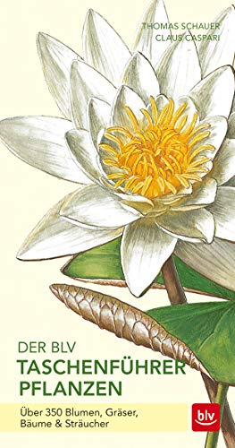 Der BLV Taschenführer Pflanzen: Über 350 Blumen, Gräser, Bäume & Sträucher