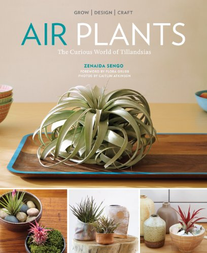 Air Plants: The Curious World of Tillandsias (English Edition)