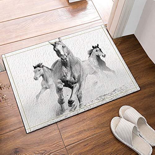 Weiß Die Hälfte Läufer (gohebe DREI die schwarz und weiße Pferde Bad Teppiche rutschhemmend Boden Eingänge Outdoor Innen vorne Fußmatte 40,6x 61cm Badteppich)