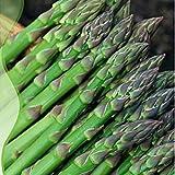 Pinkdose Verdure Bellfarm Bonsai Asparago verde di Heirloom Sparrygrass organici Per il giardino domestico di alta germinazione -20pcs / pack