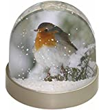 Robin Red Breast in Snow Tree Snow Dome Globe Waterball Gift