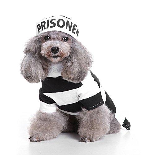 CautPY Halloween-Kostüm für Haustiere, Gefangene, Hut, Welpen, Party, Kleidung für Katzen, Cosplay (weiß)