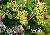 Wein (Wandkalender 2019 DIN A3 quer): Farbige Fotografien rund um das Thema Wein. (Monatskalender, 14 Seiten ) (CALVENDO Lifestyle)