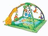 Fisher-Price Fitnessraum mit Melodien und Klänge (Mattel y8862)