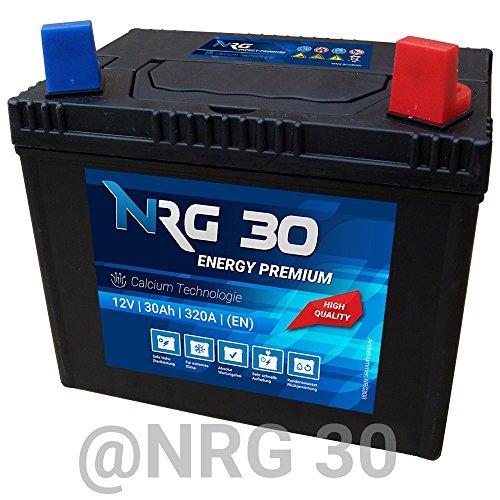 NRG Starterbatterie 30Ah Rasentraktor Aufsitzmäher Rasenmäher Batterie Plus Pol rechts Murray Husqvarna