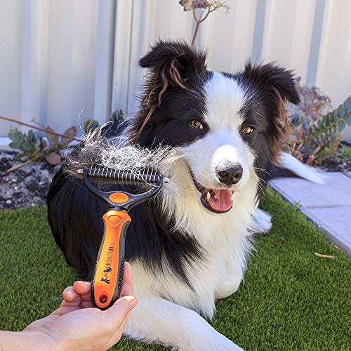 Wellness Fellpflege Hundebürste von BELLE&BLU - 5