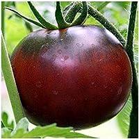Schwarze Fleischtomate mit hohem Zuckergehalt - Black Krim - 20 Samen