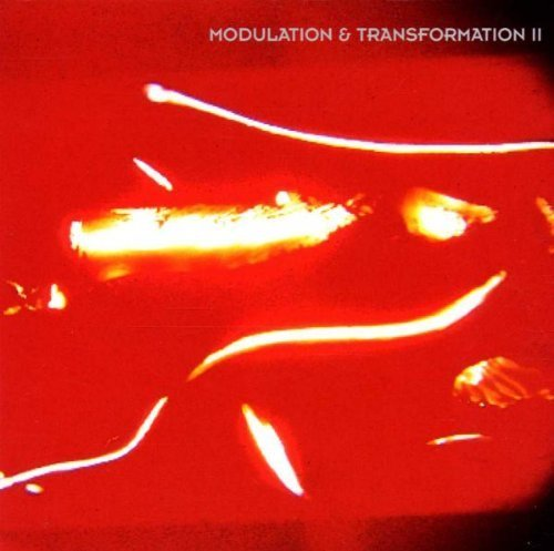 Modulation & Transformation II by Oval, Scanner, Empire, Vogel, Gas, Modulation & Transformation (1999-07-20) Oval Vogel