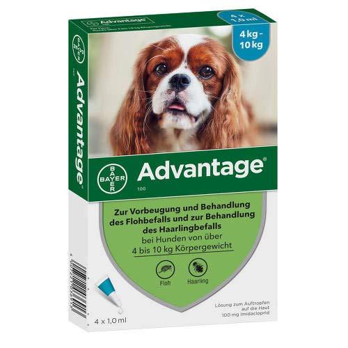 Bayer Vital GmbH Advantage 100 für Hunde L 4 STK