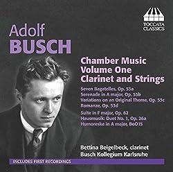 Kammermusik Für Klarinette Und Streicher