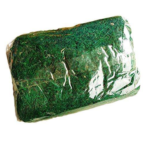 amgateeu-jardinera-musgo-natural-preservada-hierba-15libras