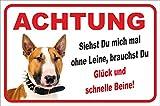 Schild - Vorsicht Bullterrier