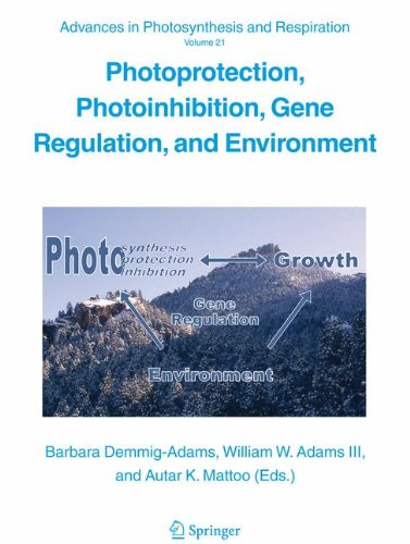 Photoprotection, Photoinhibition, Gene Regulation, and Environment (Advances in Photosynthesis and Respiration, Band 21)