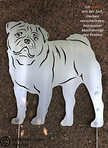 Terma Stahldesign Mops Gartenfigur höhe 30 cm (50 cm mit Spieß), Edelrost Hund, Rostfigur, Rost Figur -