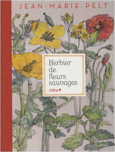 herbier-de-fleurs-sauvages