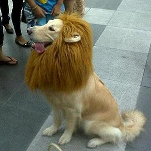 Merssavo Mascota León Melena Peluca Perro Gato Halloween Ropa Disfraz de Lujo Hasta con las Orejas