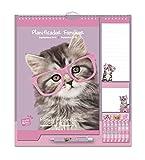 Grupo Erik Editores CPF1805 Calendario da Muro Familiare Studio Pets Gatto Family Planner 2019