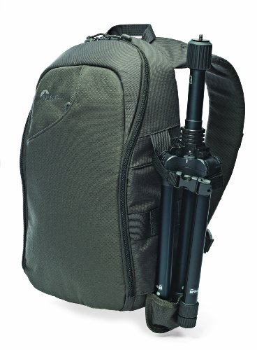 Lowepro Transit 250 AW Sling Bag for DSLR and Mirrorless Cameras – Slate Grey