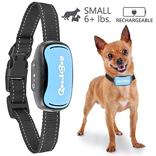 Petit Collier anti-aboiement de GoodBoy Rechargeable et étanche à l'eau dissuasion d'aboiements par vibration pour chiens petits et moyens. C'est le plus sécurisé d'Amazon 3Kg+