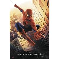 Póster Spider-man (68,5cm x 101,