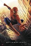 Póster Spider-man (68,5cm x 101,5cm)
