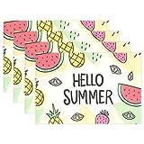 SENNSEE Hello Summer Fruits Ananas Tisch-Sets Home Teller Fußmatte Esstisch hitzebeständig Küche Tisch Matte 30,5x 45,7cm, Polyester, Mehrfarbig, 4 Stück