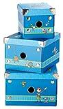 Sigikid 24395 - Boxen, Sammy Samoa, 3-er Set
