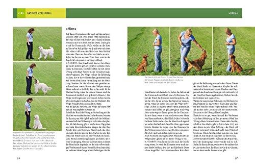 Hundeschule für jeden Tag: Erziehung die dem Hund Spaß macht - 8