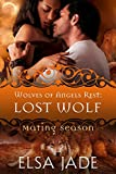 Lost Wolf: Wolves of Angels Rest #5