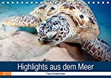 Highlights aus dem Meer - Tauchkalender (Tischkalender 2019 DIN A5 quer): Erleben Sie die farbenfrohe fantastische Welt unter Wasser! (Monatskalender, 14 Seiten ) (CALVENDO Tiere)