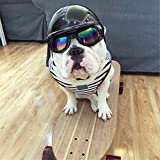 #2: Pets Empire Pet helmet Hat Dog Ridding Caps Cosplay Hat ABS Plastic Doggie Puppy Bike Motorcycle Helmets Sports Dog Costumes Accessories for Dog (S)