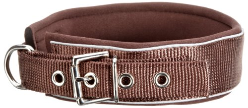 Hunter 60644 Halsband Neopren Reflect 65 - 2