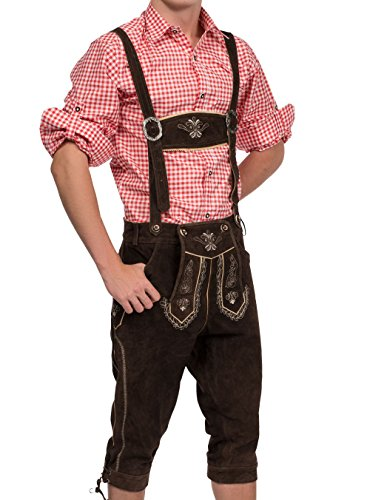 Herren Trachten Lederhose Kniebundhose inklusive Träger, Trachtenlederhose (50, Dunkelbraun)