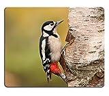 Liili Mauspad Naturkautschuk Mousepad Bild-ID: 24910048Buntspecht weiblich