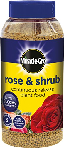 miracle-gro-rose-and-shrub-continuous-release-plant-food-shaker-jar-1-kg