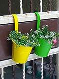 #4: Wonderland Set of 2 hanging railing buckets In Green & Yellow