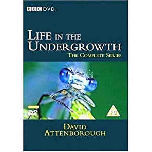 David Attenborough - Life in the Undergrowth [DVD]