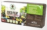 Coco&Coir 650g (9L) Kokoserde | Blumenerde aus Kokosfaser | Kokostorf | Kokoseinstreu Bodengrund für Reptilien | 100% natürlich | Terrariensubstrat aus Kokoserde | Kokoshumus