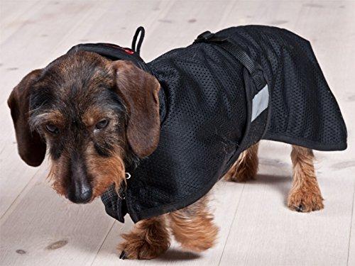 Hundenetzmantel Dackel von Back on Track schwarz M