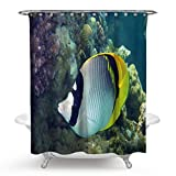 Daesar Polyester-Stoff Duschvorhang Antischimmel Fisch Unterwasser Lustiger 3D Duschvorhang 180x180 cm