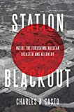 Station Blackout: Inside the Fukushima Nuclear Disaster and Recovery (English Edition)