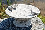 Vogeltränke Vogelbad Vogelbecken Gartendeko Vogel Tränke Wasserschale Wassertränke Grau