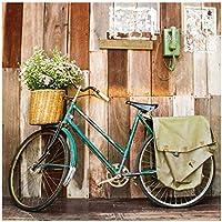 Cuadro de Bicicleta Vintage Verde de Lienzo para decoración de 80 x 80 cm France -