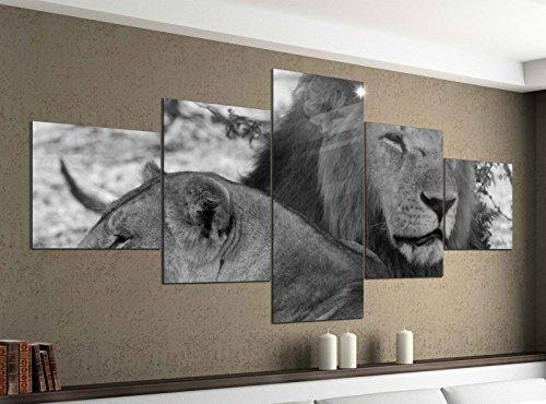 Leinwandbild 5 tlg. 200cmx100cm Löwen Afrika Raubkatze Löwe schwarz weiß Bilder Druck auf Leinwand Bild Kunstdruck mehrteilig Holz 9YA2009, 5Tlg 200x100cm:5Tlg 200x100cm