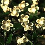 InnooTech LED Blumen Solar Lichterkette 5 Meter 50er, Warmweiß, Wasserdicht, Außenlichterkette, Weihnachtsbeleuchtung, Solar Blüten Leuchtkette für Garten, Hochzeit, Party usw.