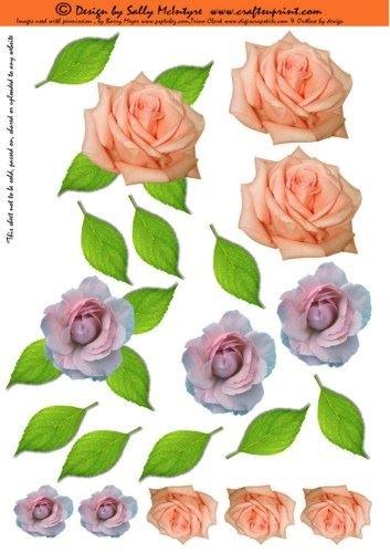 Feuille A4 pour confection de carte de vœux - just 3d flowers roses par Sally McIntyre