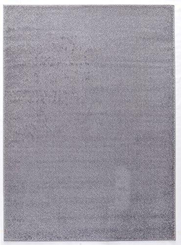 Luxus Hochwertiger einfarbiger Teppich Modern Größen Hellgrau (120x170) -