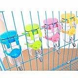 STXMALL Bouteille Chien Distributeur Deau Dog Water Bottle pour Chat Chien Chiot Cochon d'Inde Lapin Petits Animaux Bleu