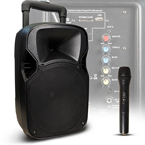 Hollywood 400 Watt Live Party Musik Beschallungsanlage Bluetooth SD USB Funkmikrofon MB-12