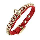 Ernst Koch 5403002.0 Nylon-Starlight-Halsband mit hochwertigem Strass für Kleinhunde, S, rot